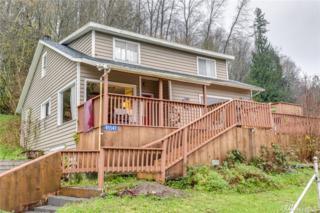 45547 Hillside Aly, Concrete, WA 98237 (#1058233) :: Ben Kinney Real Estate Team