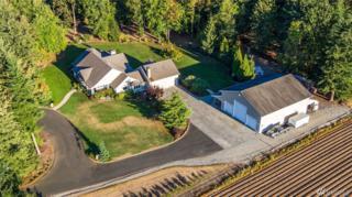 1200 Central Rd, Everson, WA 98247 (#1058980) :: Ben Kinney Real Estate Team