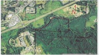 0 Buswell Rd, Elma, WA 98541 (#1059098) :: Ben Kinney Real Estate Team