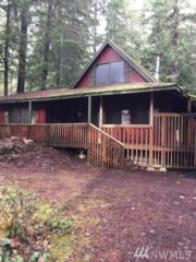 84 Northwoods, Cougar, WA 98616 (#1059226) :: Ben Kinney Real Estate Team