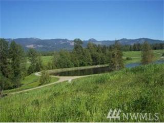 23786 Kamloop Ct, Mount Vernon, WA 98274 (#1059504) :: Ben Kinney Real Estate Team