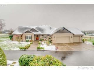 20300 NE 96th Ave, Battle Ground, WA 98604 (#1059621) :: Ben Kinney Real Estate Team