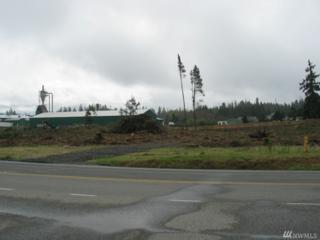 0 E Johns Prairie Rd, Shelton, WA 98584 (#1059814) :: Ben Kinney Real Estate Team