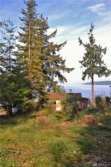 159 S Harrington Lagoon Rd, Coupeville, WA 98239 (#1060565) :: Ben Kinney Real Estate Team