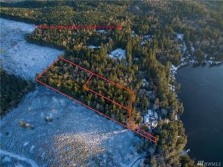 288 Xx Ames Lake Dr NE, Redmond, WA 98053 (#1061389) :: Ben Kinney Real Estate Team