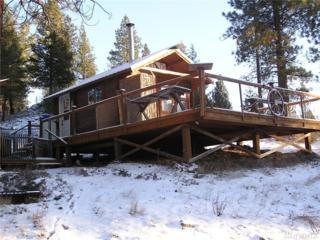 1241 Aeneas Valley Rd, Tonasket, WA 98855 (#1061521) :: Ben Kinney Real Estate Team
