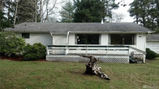 3480 Douglas, Grayland, WA 98547 (#1061569) :: Ben Kinney Real Estate Team