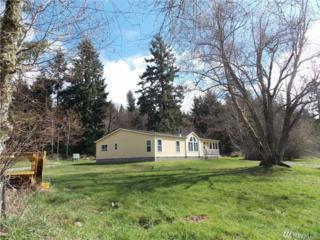 17810 Mulqueen St SE, Rainier, WA 98576 (#1061623) :: Ben Kinney Real Estate Team