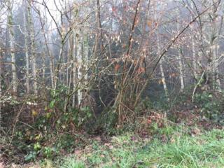 7 Forest Hill Estates, Longview, WA 98632 (#1061627) :: Ben Kinney Real Estate Team