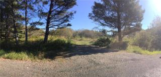 349 Monte Elma Road, Montesano, WA 98563 (#1061758) :: Ben Kinney Real Estate Team