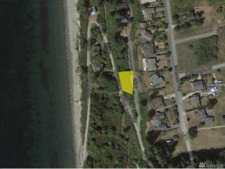 0 SW Neinhuis St, Coupeville, WA 98239 (#1062048) :: Ben Kinney Real Estate Team