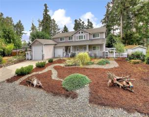 10823 Seaview Dr, Anderson Island, WA 98303 (#1062540) :: Ben Kinney Real Estate Team