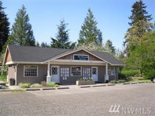 11717 State Route 302 KP, Gig Harbor, WA 98329 (#1063210) :: Ben Kinney Real Estate Team