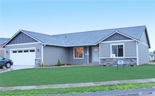 66 Mcdonald Creek Lane, Elma, WA 98541 (#1063219) :: Ben Kinney Real Estate Team