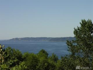 2-xx SW 297th St, Federal Way, WA 98023 (#1063237) :: Homes on the Sound