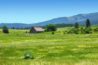 0 Iron Mountain Rd, Cle Elum, WA 98922 (#1063334) :: Ben Kinney Real Estate Team