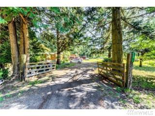 20813 86th Ave SE, Snohomish, WA 98296 (#1063684) :: Ben Kinney Real Estate Team