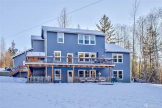 25473 Morford Ct, Sedro Woolley, WA 98284 (#1063718) :: Ben Kinney Real Estate Team