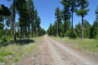 0 Summit Ridge Rd, Tonasket, WA 98855 (#1063756) :: Ben Kinney Real Estate Team