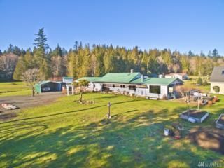 202 E Geist Meadows, Shelton, WA 98584 (#1063912) :: Ben Kinney Real Estate Team