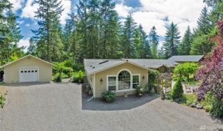 13115 Moes Rd SE, Rainier, WA 98576 (#1064015) :: Ben Kinney Real Estate Team