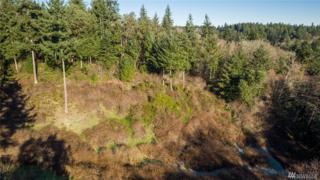 244-xx Old Mill Rd SW, Vashon, WA 98070 (#1064072) :: Ben Kinney Real Estate Team