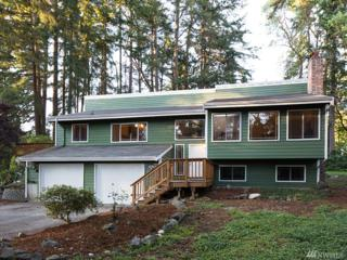 3711 47TH St Ct NW, Gig Harbor, WA 98335 (#1064228) :: Ben Kinney Real Estate Team