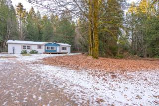 16902 57th St KP, Vaughn, WA 98394 (#1064536) :: Ben Kinney Real Estate Team
