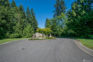 1728 154th St Ct NW, Gig Harbor, WA 98332 (#1064578) :: Ben Kinney Real Estate Team