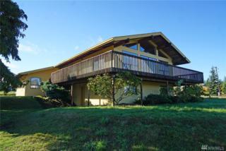 83 Blue Mountain Rd, Port Angeles, WA 98362 (#1064801) :: Ben Kinney Real Estate Team