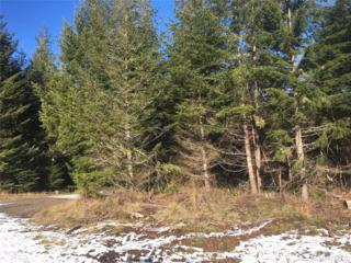 2 Little Quil Rd - -, Quilcene, WA 98376 (#1064971) :: Ben Kinney Real Estate Team