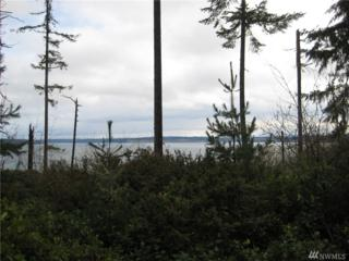 9807 104th Ave, Anderson Island, WA 98303 (#1065079) :: Ben Kinney Real Estate Team