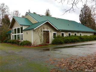 17917 Vashon Hwy SW, Vashon, WA 98070 (#1065238) :: Ben Kinney Real Estate Team