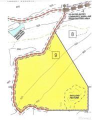 0-Lot 9 Lake Cushman Forest Reserve, Hoodsport, WA 98548 (#1065251) :: Ben Kinney Real Estate Team