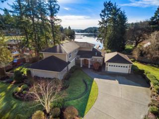 5102 Picnic Point Ct NW, Gig Harbor, WA 98335 (#1065792) :: Ben Kinney Real Estate Team