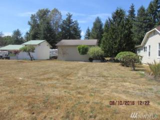 509 Taylor St, Ryderwood, WA 98581 (#1066260) :: Ben Kinney Real Estate Team