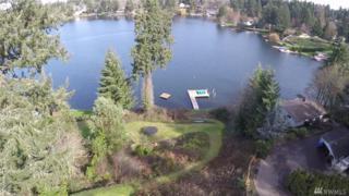 11107 SW Lake Stelacoom Dr Dr SW, Lakewood, WA 98498 (#1066613) :: Ben Kinney Real Estate Team