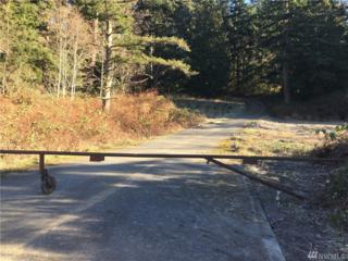6268 State Route 20, Anacortes, WA 98221 (#1066676) :: Ben Kinney Real Estate Team