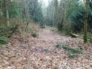 0 Hoppy Trail, Camano Island, WA 98282 (#1067185) :: Ben Kinney Real Estate Team