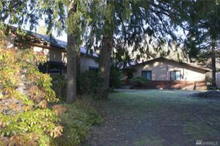 560 Mountain Trail Rd, Brinnon, WA 98320 (#1067462) :: Ben Kinney Real Estate Team