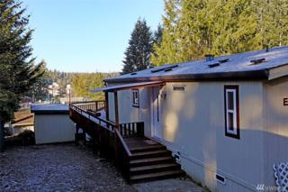 181 E Lakeview, Grapeview, WA 98546 (#1067937) :: Ben Kinney Real Estate Team