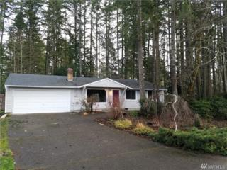 11315 149th Ave KP, Gig Harbor, WA 98329 (#1067978) :: Ben Kinney Real Estate Team