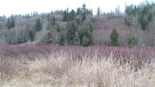 21 Elk Ridge Lane, Elma, WA 98541 (#1068051) :: Ben Kinney Real Estate Team