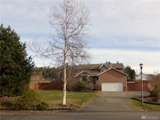 11107 171st Ave E, Bonney Lake, WA 98391 (#1068441) :: Ben Kinney Real Estate Team