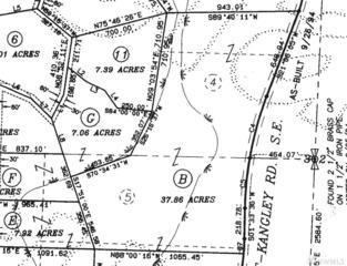 293-xx Kanaskat Kangley Rd SE, Ravensdale, WA 98051 (#1068445) :: Ben Kinney Real Estate Team