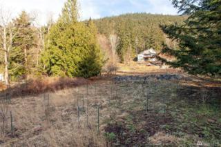 154 Hiline Rd, Bellingham, WA 98229 (#1068500) :: Ben Kinney Real Estate Team