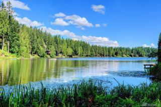 3029 E Ames Lake Dr NE, Redmond, WA 98053 (#1068969) :: Ben Kinney Real Estate Team