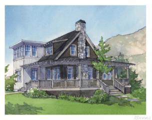 110 Porcupine Lane, Chelan, WA 98816 (#1069153) :: Ben Kinney Real Estate Team
