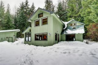 62223 Mountain Beaver Wy E, Greenwater, WA 98022 (#1069208) :: Ben Kinney Real Estate Team