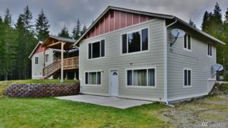 1060 NE Toonerville Dr, Belfair, WA 98528 (#1069247) :: Ben Kinney Real Estate Team